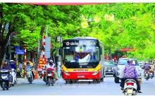 Xây dựng Quy chế quản lý hoạt động vận tải hành khách công cộng thành phố Hải Phòng